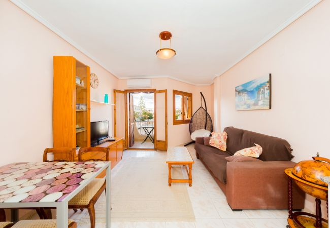 Apartment in Torrevieja - ID104